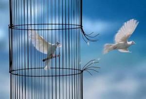 Liberté dans Citations liberte-300x203